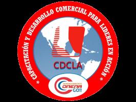Capacitación y Desarrollo Comercial para Líderes en Acción | ONENA